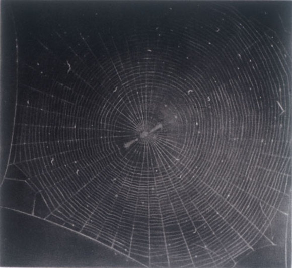 Untitled_web_2_2001_mezzotint